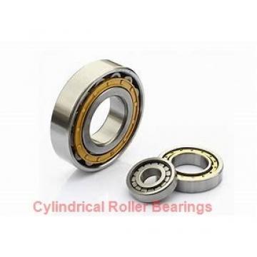 6.299 Inch | 160 Millimeter x 11.417 Inch | 290 Millimeter x 1.89 Inch | 48 Millimeter  SKF NJ 232 ECM/C3  Cylindrical Roller Bearings