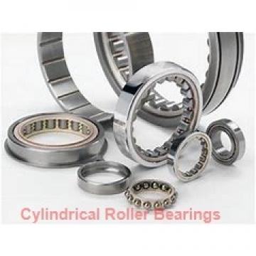 1.969 Inch | 50 Millimeter x 4.331 Inch | 110 Millimeter x 1.575 Inch | 40 Millimeter  SKF NJ 2310 ECP/C3  Cylindrical Roller Bearings
